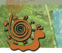 10.07 educação ambiental