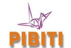 pibiti-cnpq