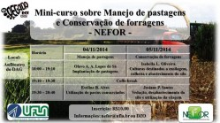 minicurso-nefor
