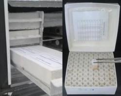 preservação e gerenciamento de recursos microbiológicos - liofilização e criopreservação de linhagens