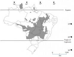Distribuição das áreas de Cerrado no Brasil - adaptado do estudo pioneiro do professor Alfredo Lopes - 1977