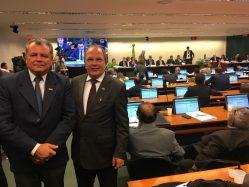Professores Scolforo e Nazareno no Senado Federal - Comissão do Orçamento