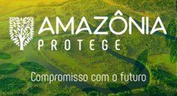 UFLA é parceira do projeto Amazônia Protege lançado nesta terça-feira pelo Ministério Público Federal