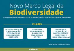 Último ano para regularização das exigências do novo marco legal da biodiversidade: confira o tutorial do Nintec